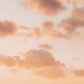 Head in the clouds @gabimulder   .  #sky #pinksky #clouds #dream #ciel #cielrose #nuages #mondaymotivation #mood #mondaymood